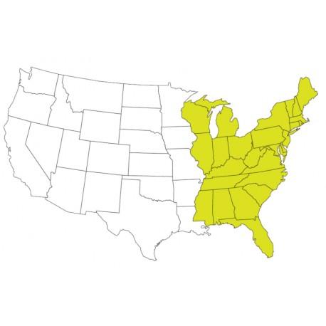 Abbonamento IFR digitale Stati Uniti costa Est