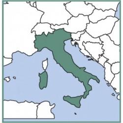 VFR Manual ITALIA/MALTA con introduzione