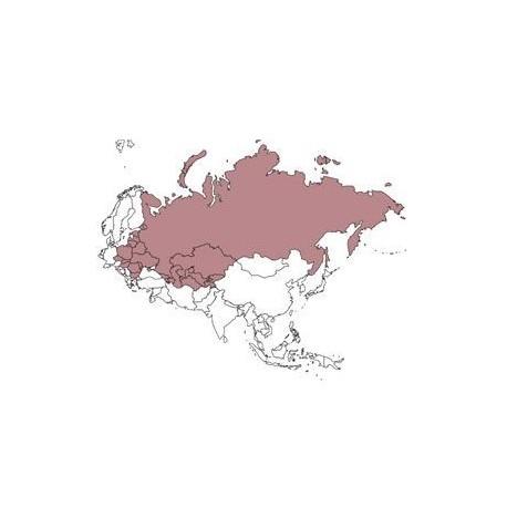 Abbonamento IFR digitale Asia (EEU)