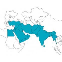 Abbonamento JeppView Medio Oriente IFR (MES)