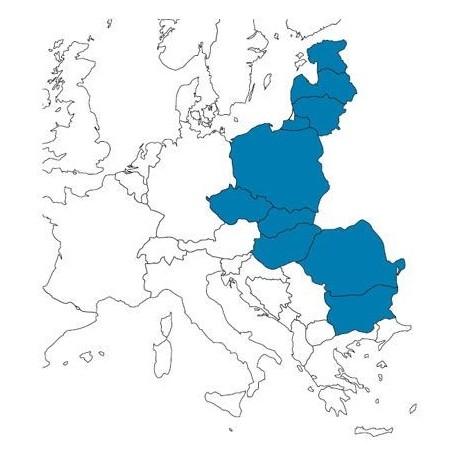 Abbonamento IFR digitale Est Europa Special per MFD (EAS)