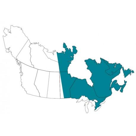 Abbonamento IFR digitale Canada Est per MFD